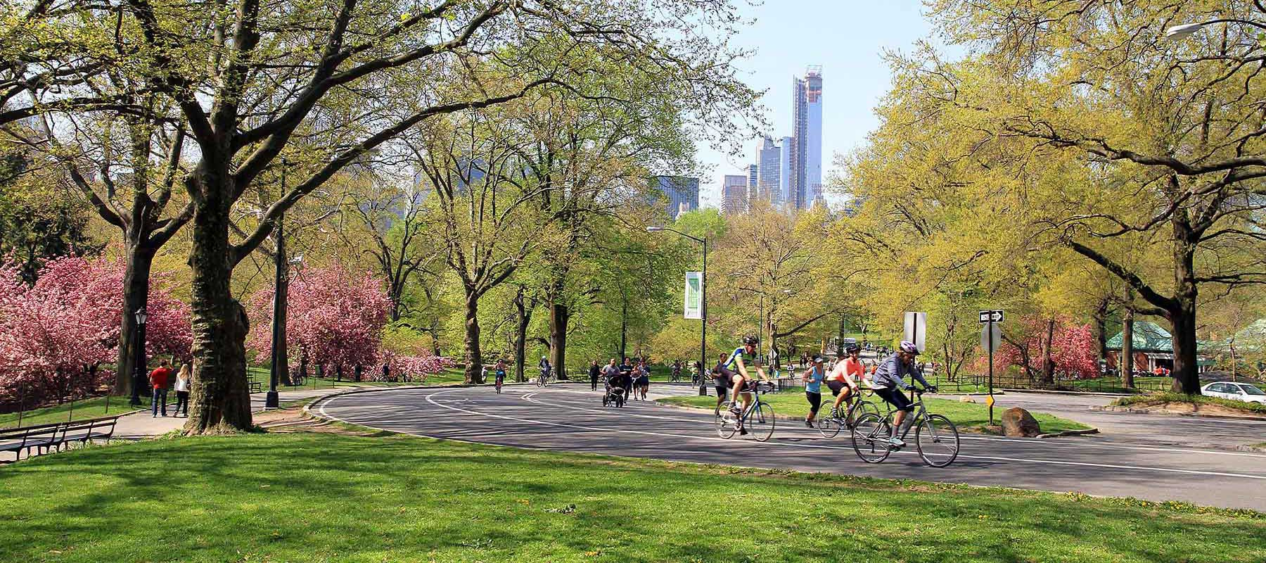 NYC Central Park in Spring